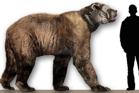 先史時代の人類が戦ったであろう恐るべき10の動物