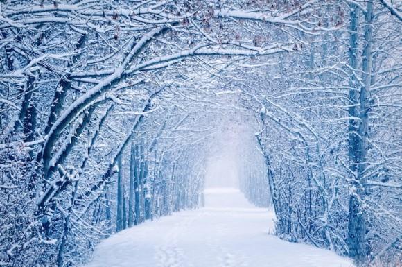 息をのむような美しい冬景色の写真で巡る世界一周