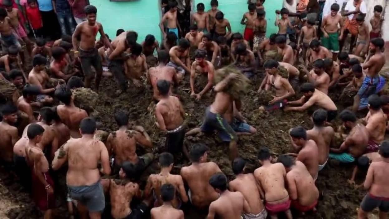 牛糞を投げあい牛糞にまみれるインド伝統の行事