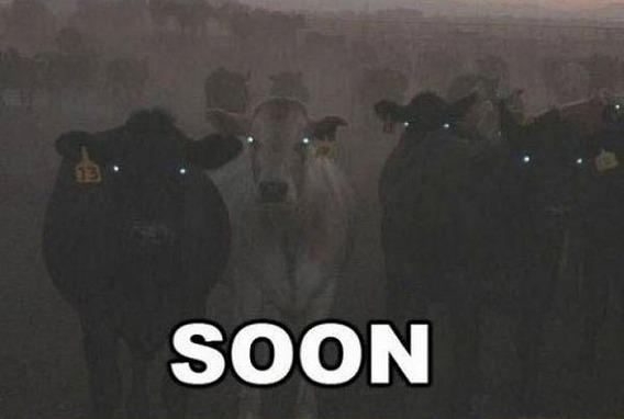 soon_08