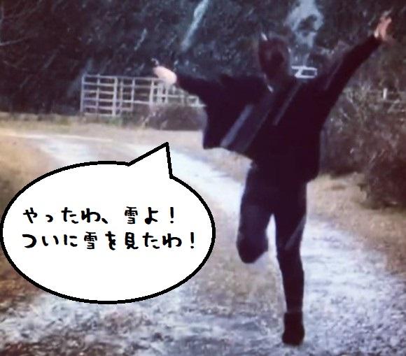 snow2_e
