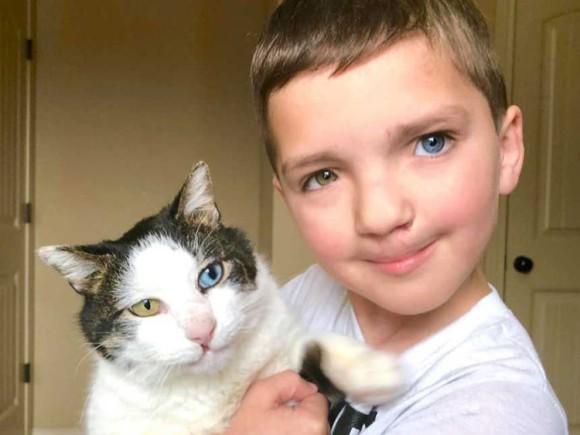 いじめられっ子だったオッドアイで口唇口蓋裂の少年、全く同じ境遇の猫と運命の出会い。愛と勇気をもらう