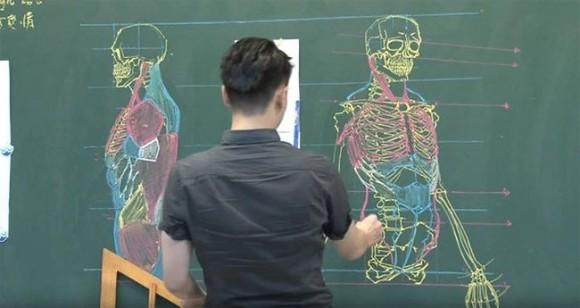 美術解剖学の先生のチョークスキルがあまりにも高かった。黒板にチョークで描いた人体解剖図がハイクオリティ