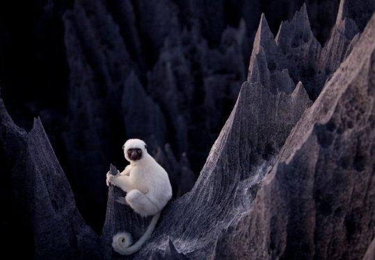 Madagascar_09