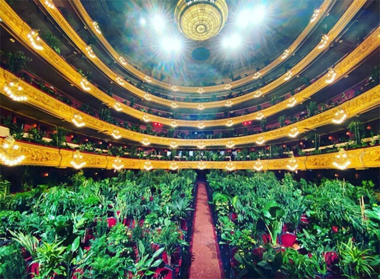 オペラハウスの座席が植物で埋め尽くされる