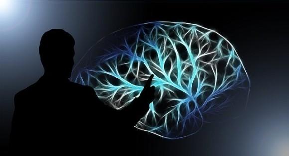 brain-3141247_640_e