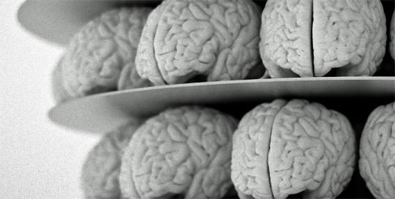 ついに強化人間が?脳と脊髄の神経のつながりを強化させることに成功(米日研究)