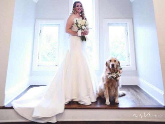 一番に祝福してもらいたかったのは愛犬だった。結婚式で一緒にバージンロードを歩いてくれたゴールデンレトリバー
