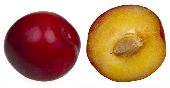 2Red-Plums_e
