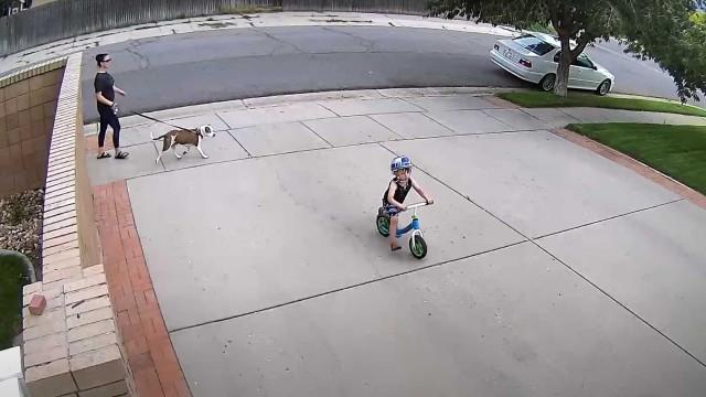 自宅の敷地内に毎日自転車で入り込んでくる少年に住民がとった対応がやさしさに溢れていた!(アメリカ)