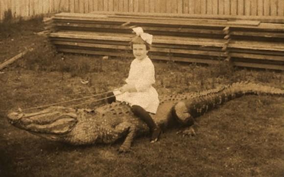 20世紀のアメリカでは、子どもがワニに乗るのがトレンドだった。ワニと触れ合える楽園「ワニ農場」