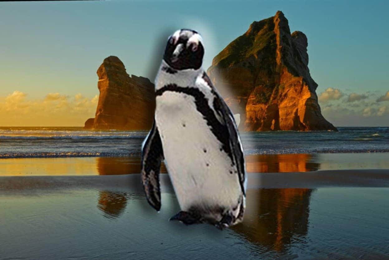 全てのペンギンの先祖はジーランティア大陸に存在した