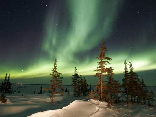 aurora borealis (4)