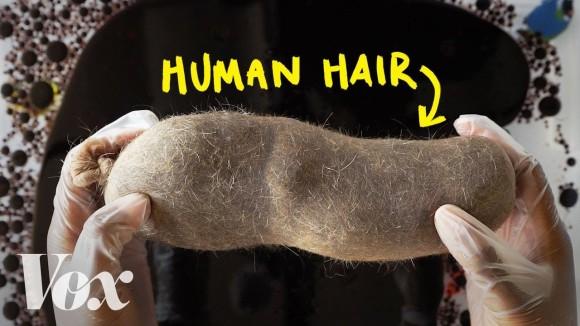 髪は地球を救う!?人間の髪の毛が海の汚れをきれいにしてくれる