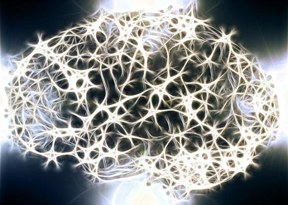 neurons-1739997_640_e