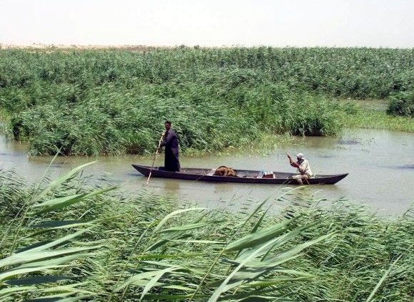 Marsh_Arabs_in_a_mashoof_e