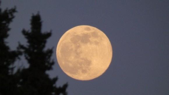 moon-5373080_640_e