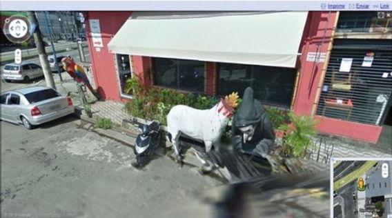 curious_google_street_640_19