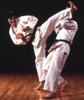 karate-1-tm