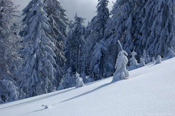 beautiful_winter_mountains_640_09