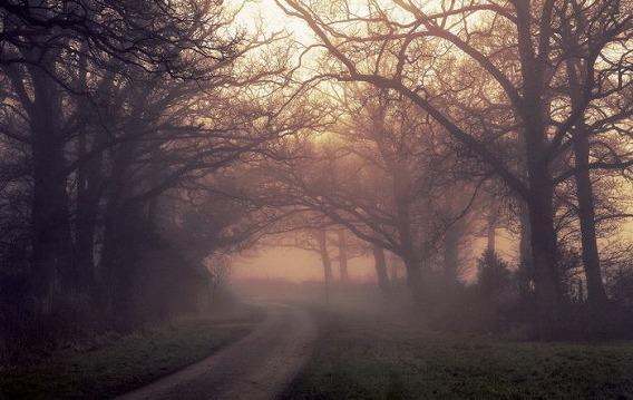 fog_18