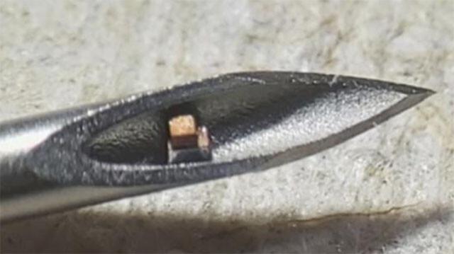 どこまで小さくできるかやってみた。ダニ並みに小さな世界最小の電子チップが誕生。体内に埋め込み検温もできる