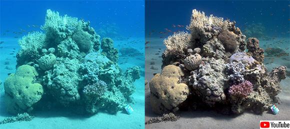 海中写真から青緑色を除去し、本当の色を再現するアルゴリズムを海洋学者が開発