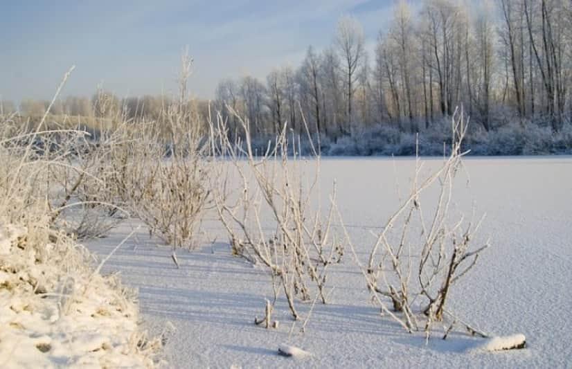 lake-2985300_640_e