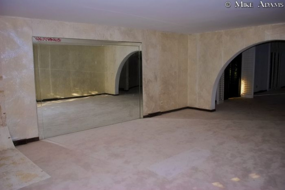 abandoned_mike_tyson_mansion_12