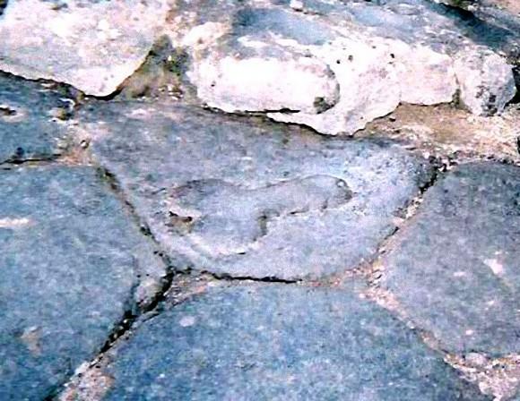 イタリアの古代都市遺跡「ポンペイ」の壁や通りのあちこちに石造りの息子スティックが。いったいなぜ?
