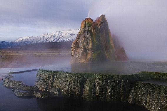 fly geyser 8