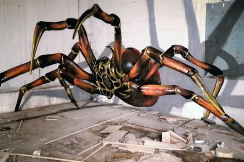 spider4_e