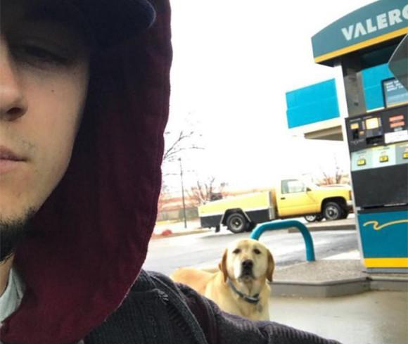 迷子なの?町を徘徊する犬のネームタグを見たところ、驚きの文言が!(アメリカ)