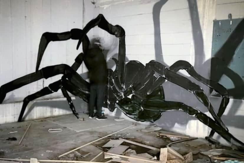 spider3_e