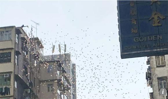 本当に空からお金が降ってきた!香港で空から大量のお札が舞い降りてきてパニックが起きるという事案が発生
