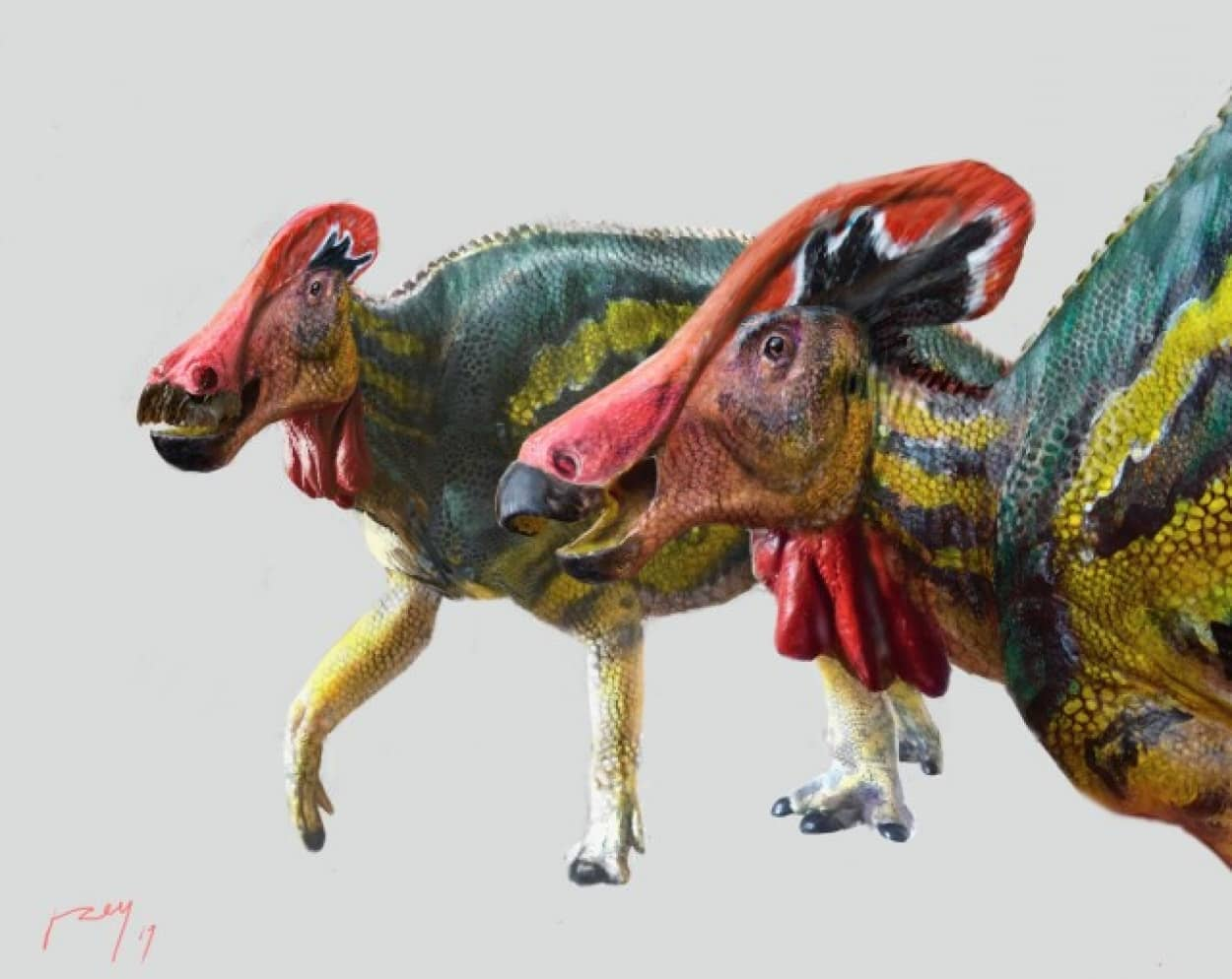 おしゃべりな恐竜の新種が発見される
