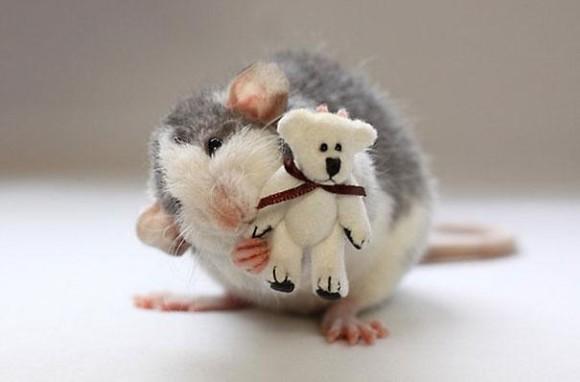 rats-with-teddy-bears-ellen-van-deelen-4_e