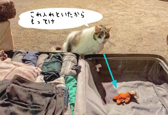 「これもってけ」旅行のパッキングをしていると、必ずスーツケースにお気に入りのぬいぐるみをいれてくる猫