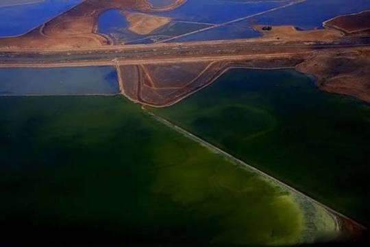 colored-salt-ponds-09