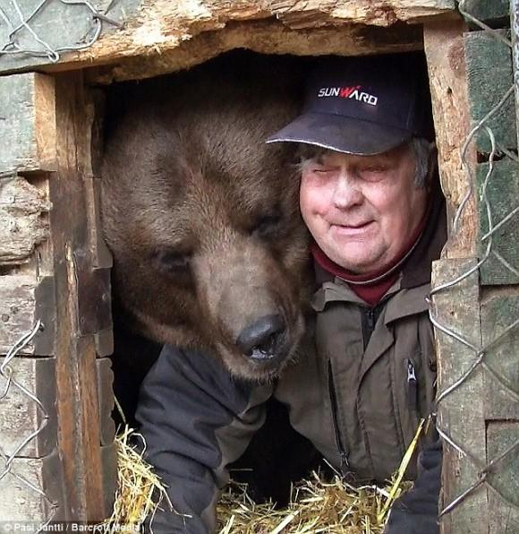 孤児となったヒグマを世話することに人生を捧げたフィンランドのクマおじさんの画像