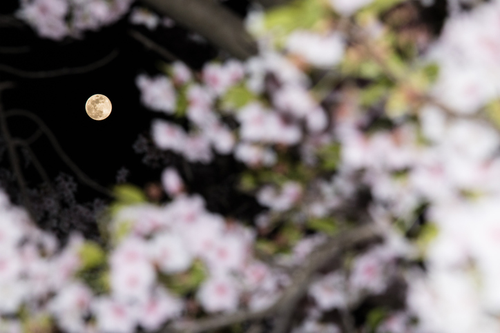 3月の満月:2021年3月29日、午前3時48分