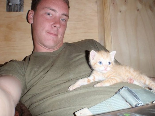 kittens_found_by_us_marines_in_afghanistan_11