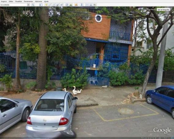 curious_google_street_640_17