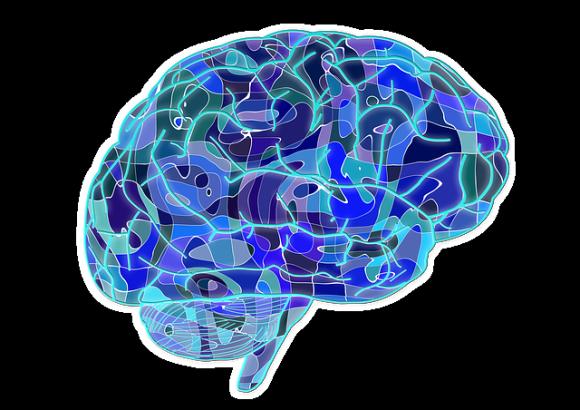 人間は脳内でミステリアスな幻覚物質が分泌されている。一体何のために?臨死体験と関係があるのか?(米研究)