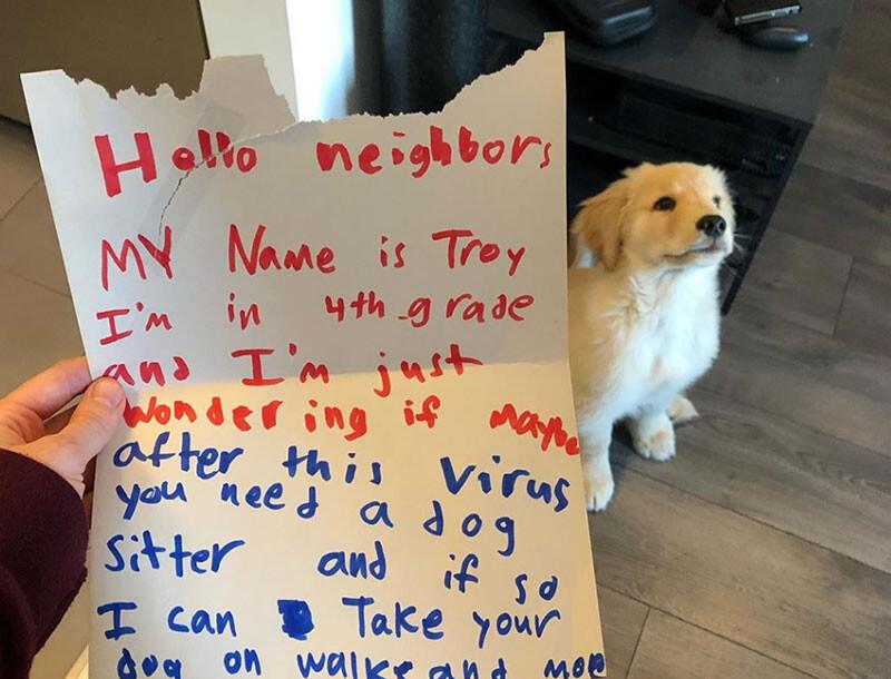 少年が犬の飼い主に手紙