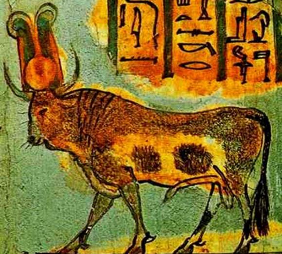 神と崇められた10の動物 : カラ...