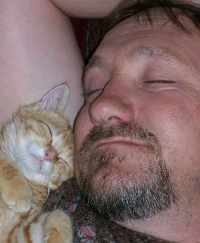 People-Who-Didnt-Want-Cats-7_e