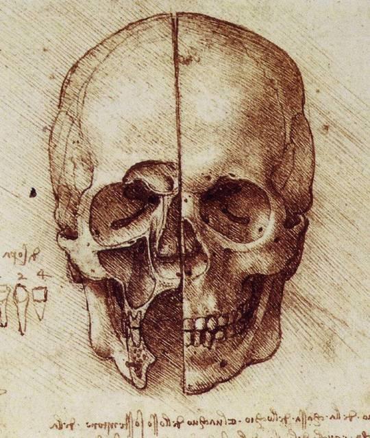 skull2tm6