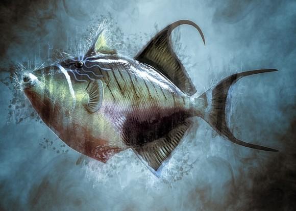 動物に感覚や感情はあるのか?では魚は?その科学的な見解とそこに至るまでの経緯