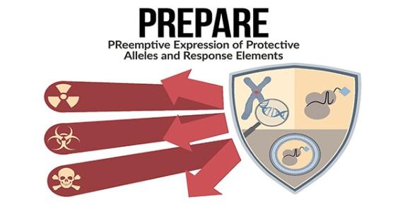 PREPAREFinalArtwork619-316a_e
